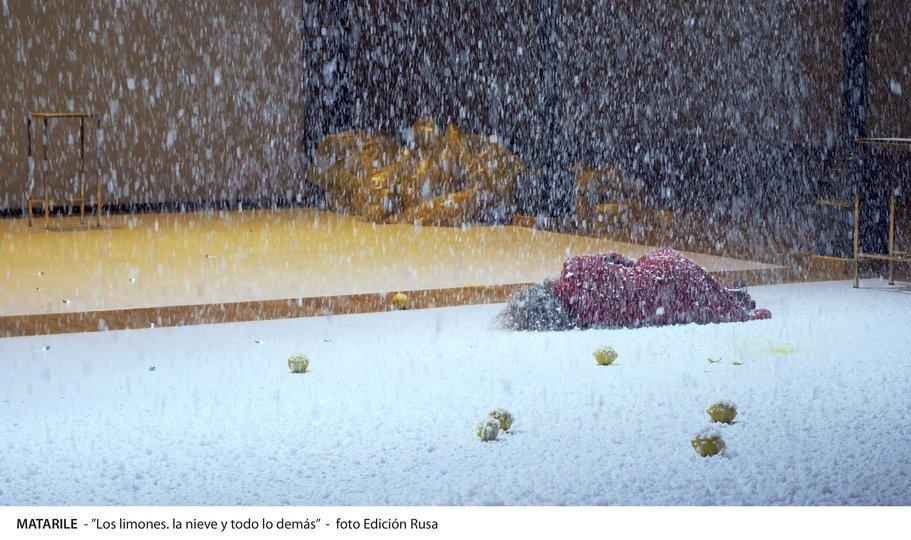 Image 1 in the gallery of the show Los limones, la nieve y todo lo demás