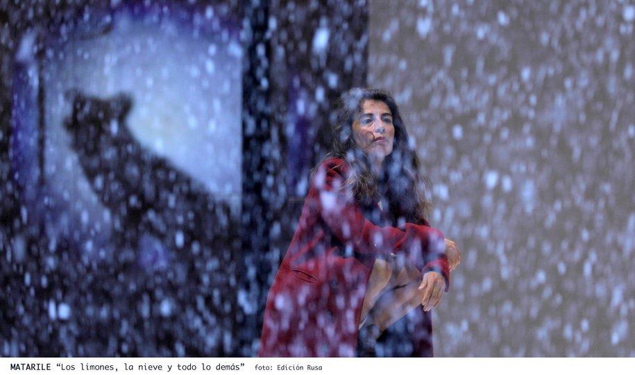 Image 0 in the gallery of the show Los limones, la nieve y todo lo demás
