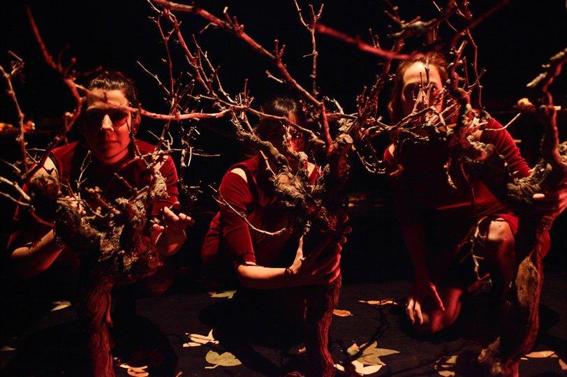 Galeria d'imatges 3: Maldito otoño