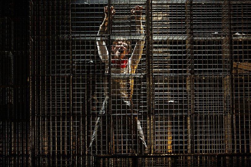 Imagen 4 de la galería del espectáculo Juguetes rotos