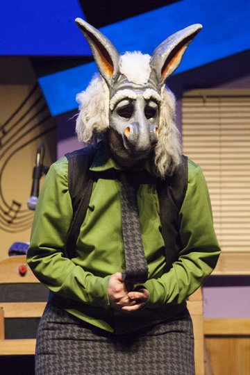 Galeria d'imatges 8: La fiesta de Donkey