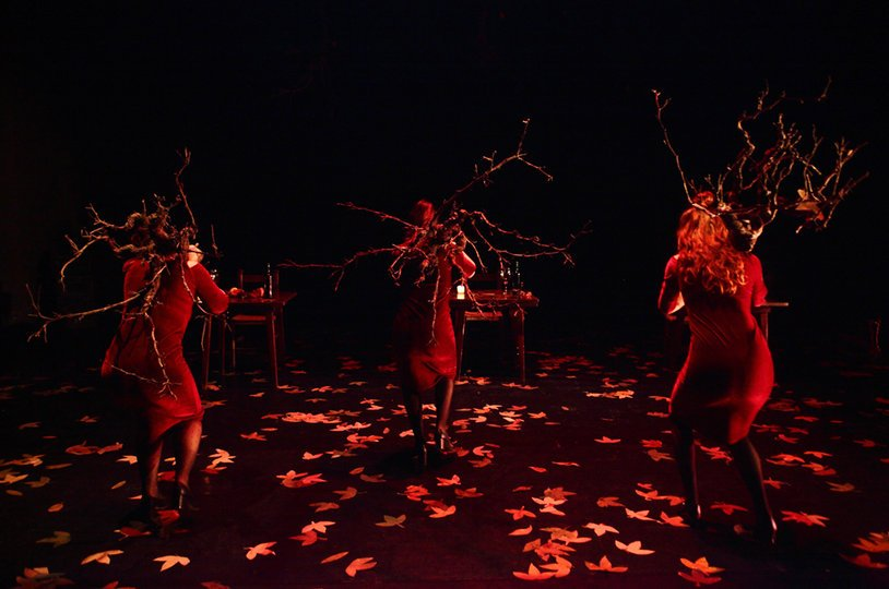 Galeria d'imatges 2: Maldito otoño