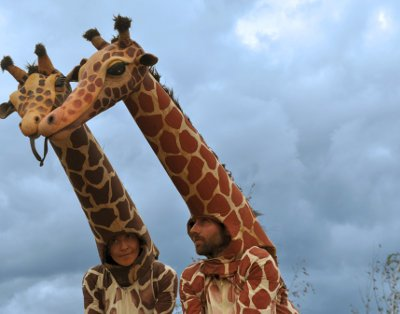 Cover image of the show: Girafes
