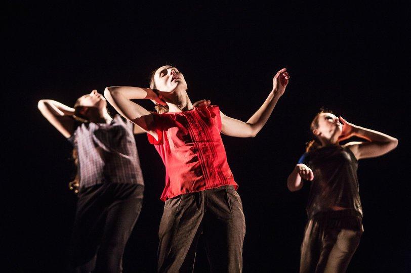Imagen 4 de la galería del espectáculo Just a Dancer